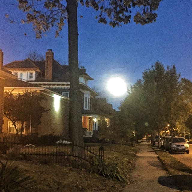 Look at the gorgeous moon tonight! Captured this beauty on an evening walk. #itsthelittlethings #IChooseBeauty Day 704