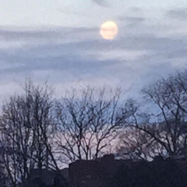 Not the greatest picture, but this morning's moon was stunning! #IChooseBeauty Photo Challenge today was to take a picture of something on the sky.  #IChooseBeauty Day 795 #morningmoon