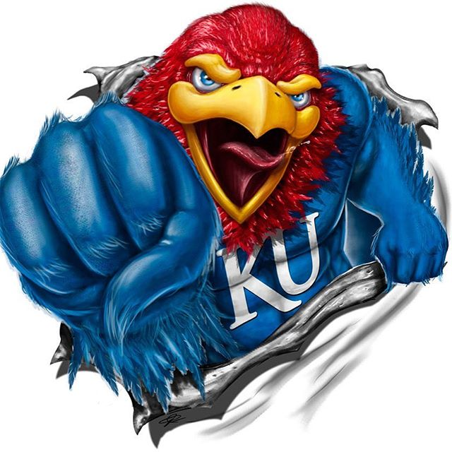 Happy March Madness Elite 8 weekend everyone! #gojayhawks #kansasgirl #IChooseBeauty Day 856