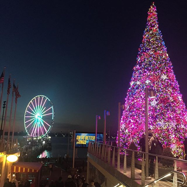 Gorgeous lights at National Harbor. #IChooseBeauty Day 1102