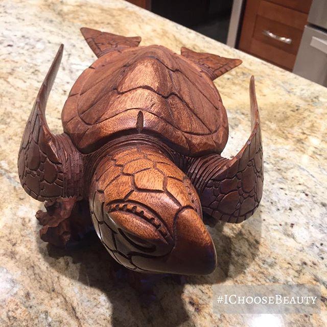 My new turtle friend. #turtlepower #IChooseBeauty Day 1550