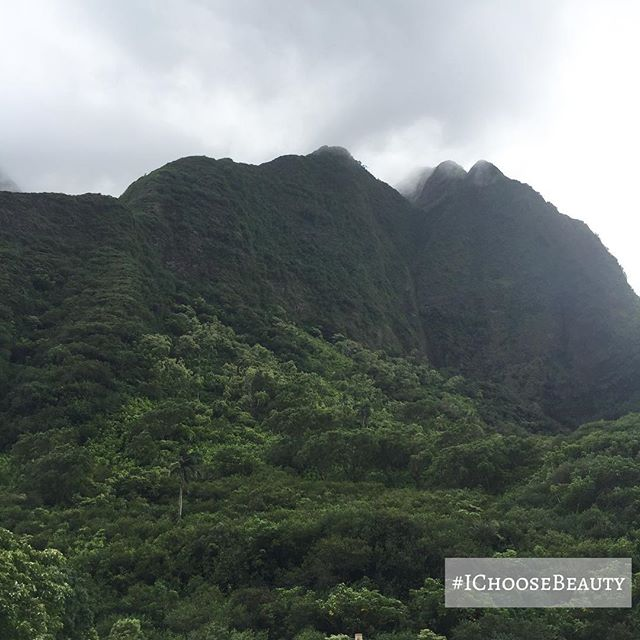 So mystical and peaceful. #iaovalley #IChooseBeauty Day 1799