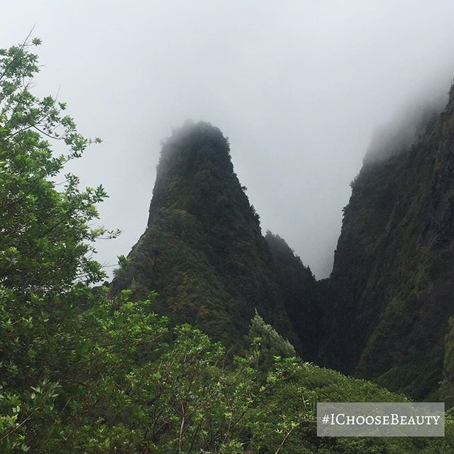 A much-needed visit to Iao Valley. I feel such great energy whenever I go there. #iaovalley #justwhatineeded #ichoosebeauty Day 1844