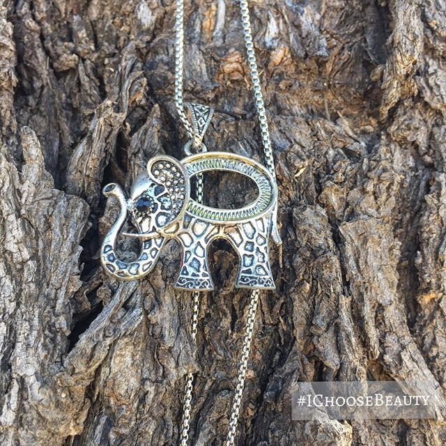 I don't know the meaning behind this... but I love that someone has this cool elephant pendant hanging on a tree outside their house. ️ #ichoosebeauty Day 1942
