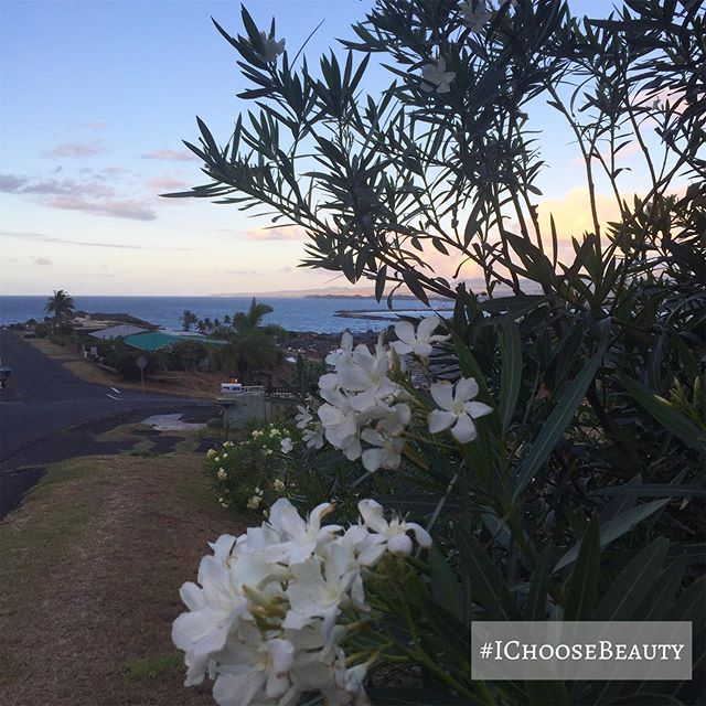 In love with summer evenings and sunsets. Happy #alohafriday! 🥂 #ichoosebeauty Day 2032