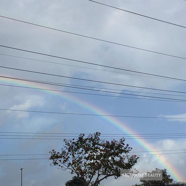 Mondays are for giant rainbows.    #ichoosebeauty Day 2294